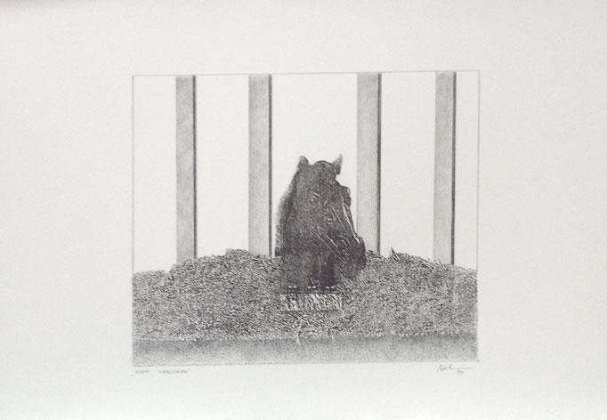 Kopf verloren, Monotypie, 35 x 50 cm, 1997. (638)