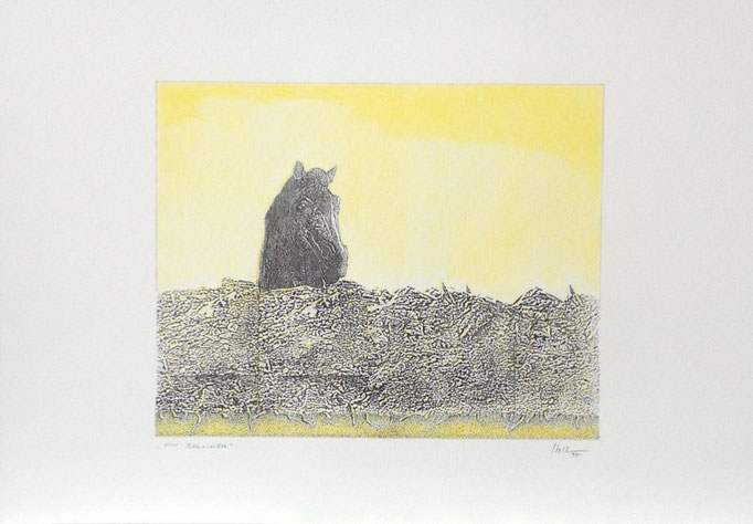 Ein Berliner, Monotypie, 35 x 50 cm, 1997. (640)