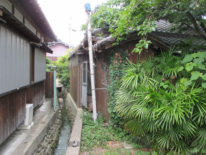 家の敷地の三方が水路で囲まれています。