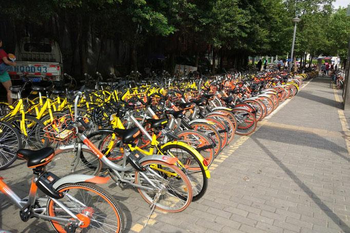 中國では移送用に並ぶシエアー自転車