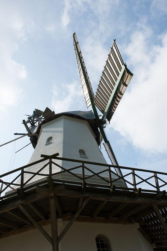 (C) Silke Heyer Photographie | Spengeler Mühle