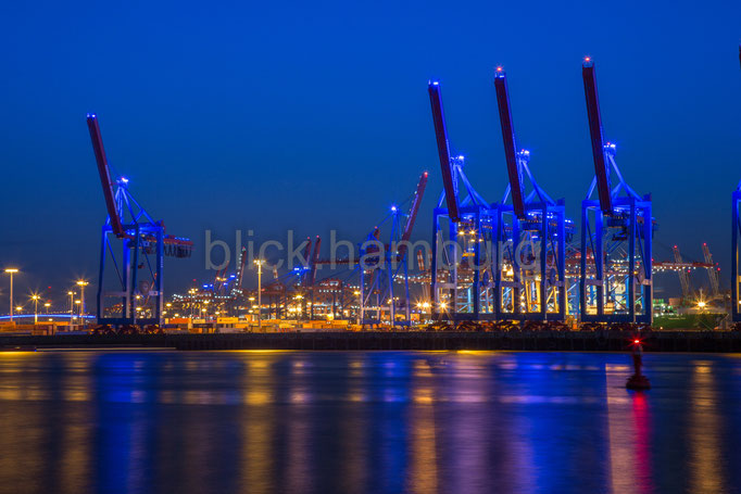 Blueport 8