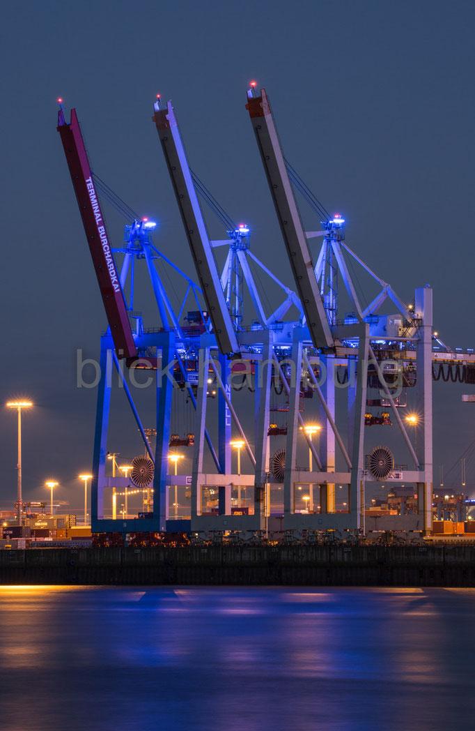 Blueport 9