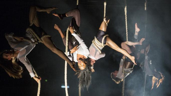 Bianco Firenza Guidi NofitState Circus