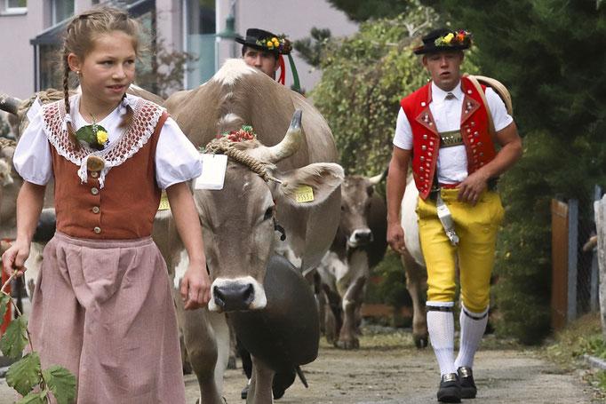 foto-aldente.net - Schwellbrunn - Viehschau - Fotografie - Tierfotografie