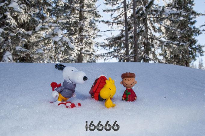Snoopy, Woodstock und Charlie Brown im Schnee
