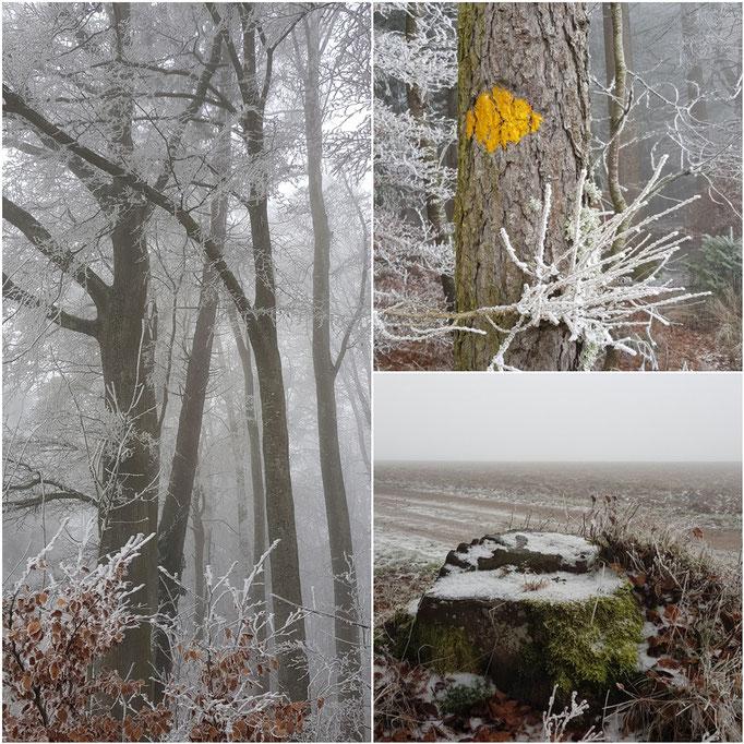 Frieswil Winteraufnahme gefroren