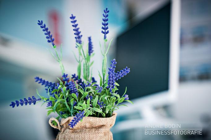 Businessfotografie: Unternehmensfotos, Imagefotos und Detailaufnahmen für die Webseite eines Maklers auf Teneriffa