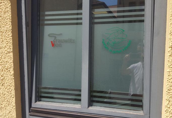 Sichtschutz für Fenster von Tierarzt in Neumarkt i.d.Opf.