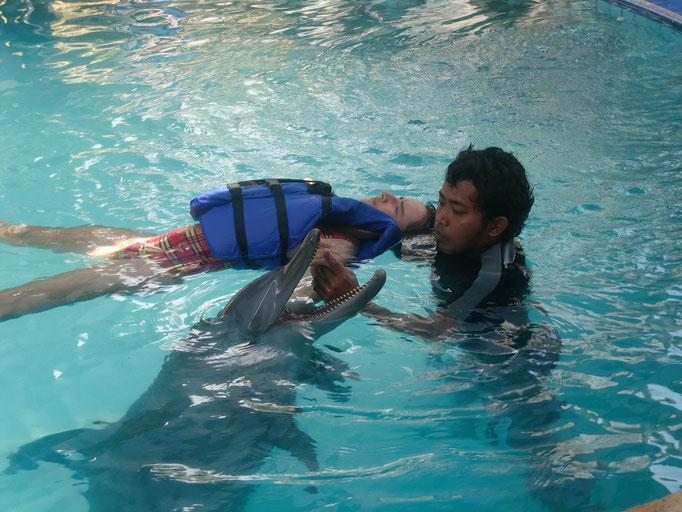 Lovina Delphin