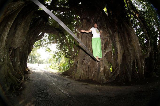 Slacking the big tree