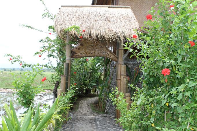 Willkommen in Medewi west Bali