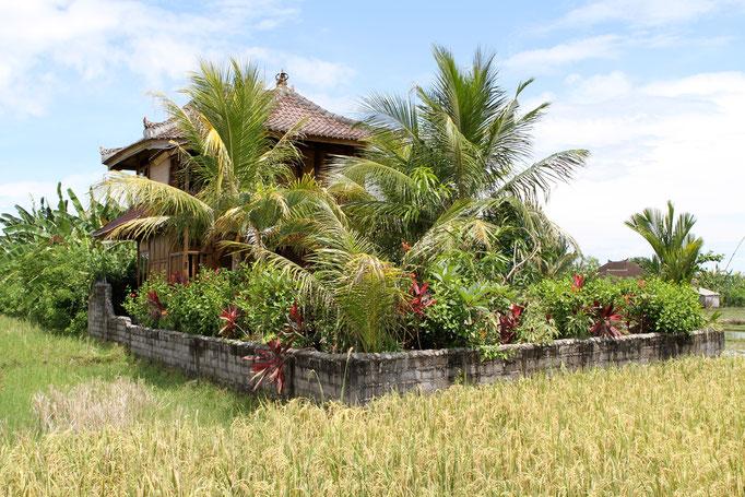 Bali Bungalow Unterkunft