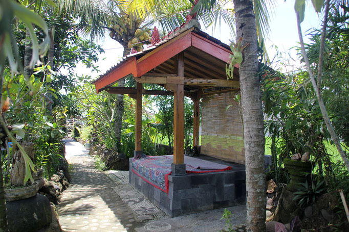 place of healing medewi