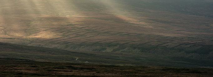 Ireland January 2018 / Wicklow Mountains