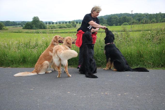Dunja, Arya, Dyani & Nami