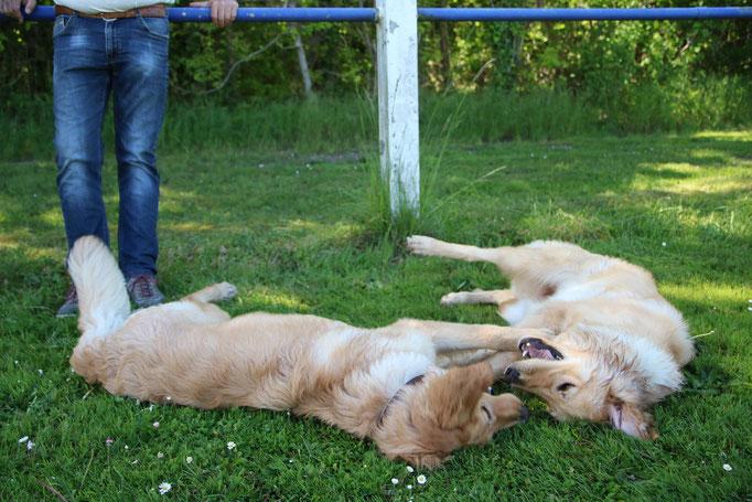 Aika & Arya