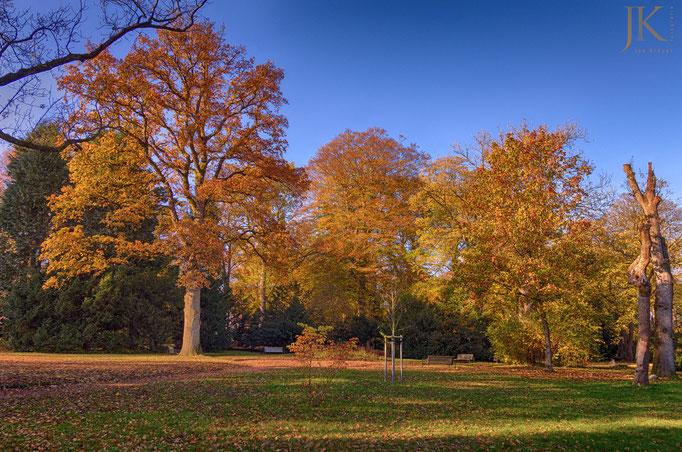 Herbst-HDR auf dem Alten Friedhof in Flensburg