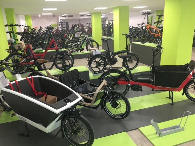 e-Bikes kaufen in der e-motion e-Bike Welt Münster