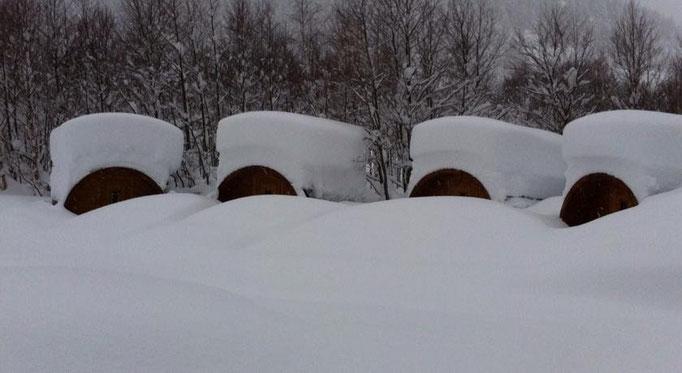 cuando nieva los clientes deben llegar con trineo a -30ºC