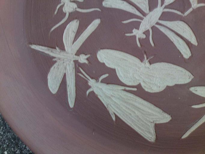 bord met insekten