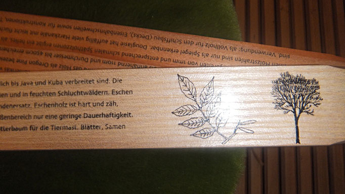 Zollstock 29 euro, hergestellt in Deutschland