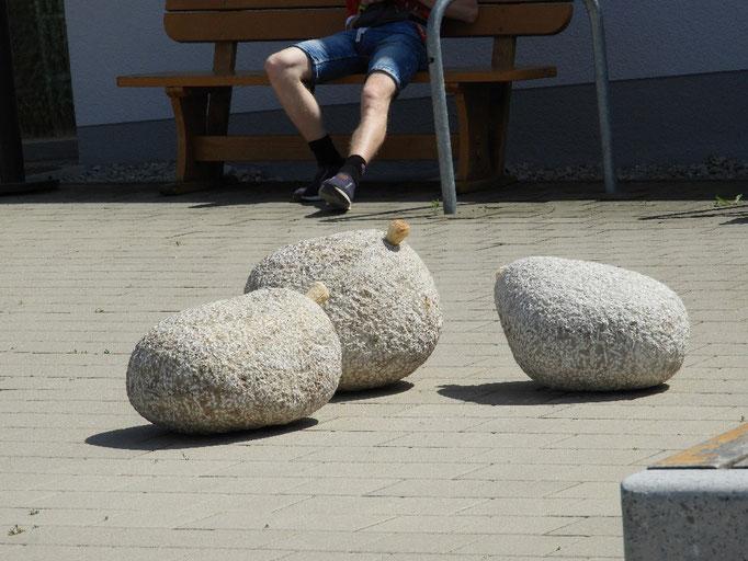 03: Schullersteine, Stein und Holz von Jaak Hillen