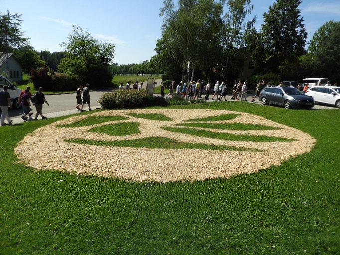 05: Siegel, Sägespäne auf Gras von Leo