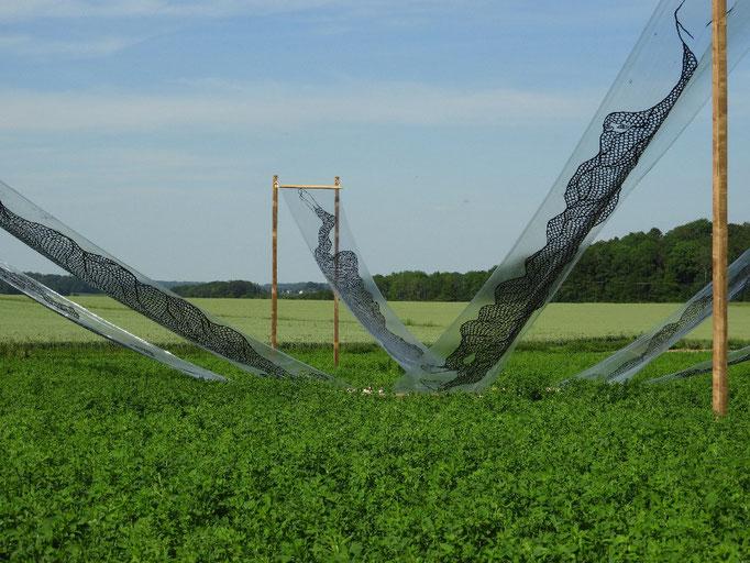 04: Windmühlenschatten, Holz und Acryl auf Plastikfolie von Takashi