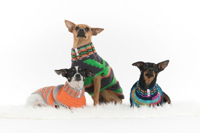 Idefix, Pluto und Mini in Ihren Pullovern