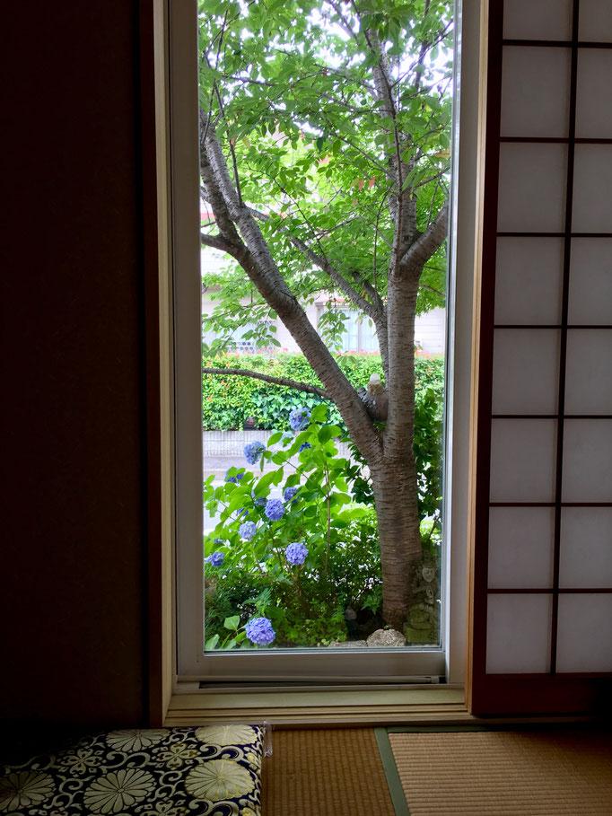 松龍庵からの眺め、春には桜、梅雨には紫陽花、秋には紅葉と・・・