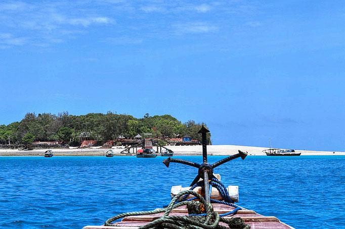 Viaggio a Changuu Island - Zanzibar