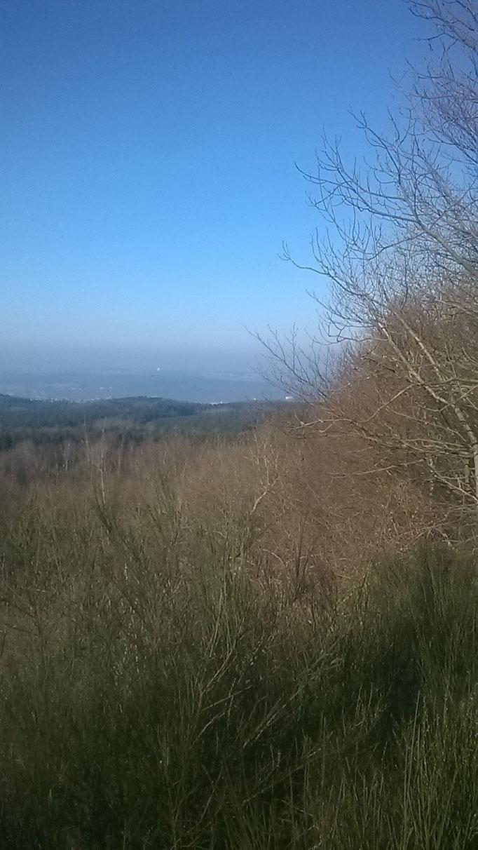 Blick ins Rheintal vom Asberg