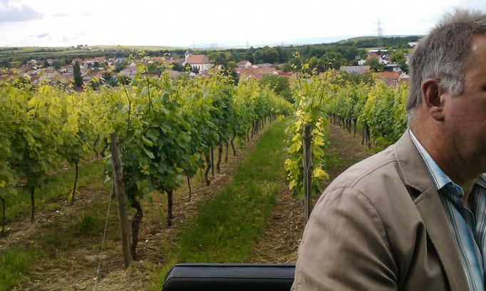 Kutschfahrt durch die Weinberge