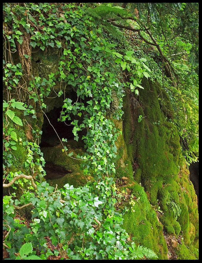 Grotta a Sud di Albio