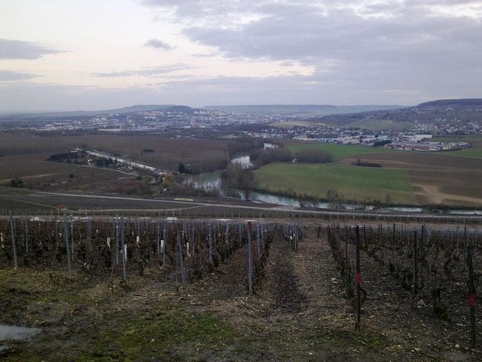 Vallée de la Marne et l'océan de vignes EPERNAY au loin