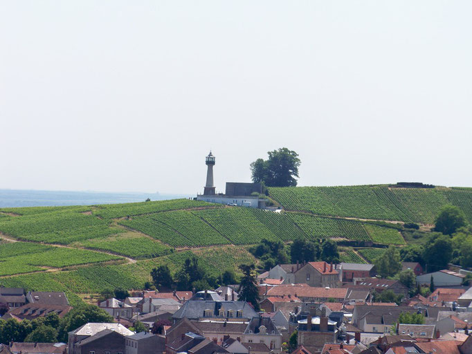 Le phare de VERZENAY dans l'océan de vignes ( musée de la vigne )