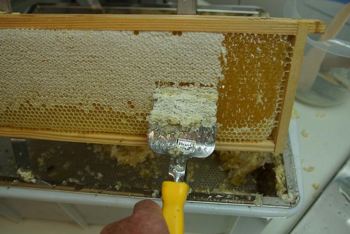 Honigwabe entdeckeln (Mit Entdeckelungsgabel konservierenden Wachs entfernen)