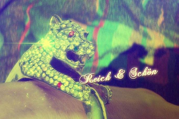 Serie Reich und Schön, 20x30cm, 2010