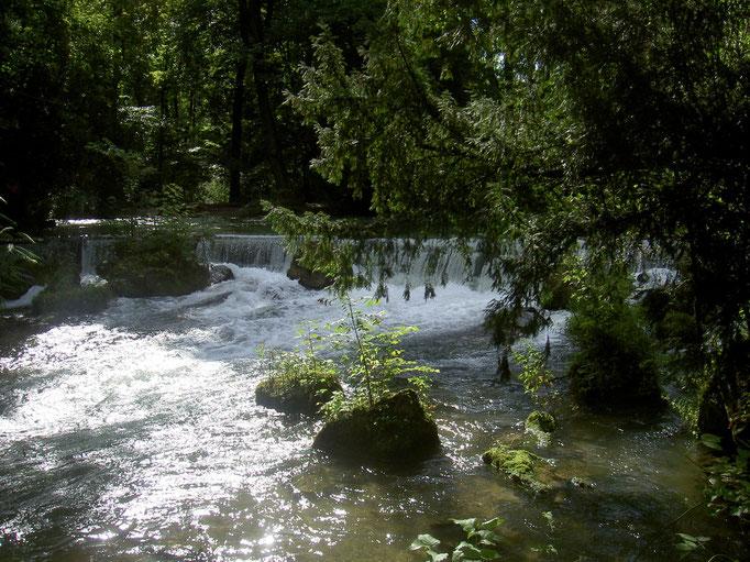 Wasserfall im Englischen Garten