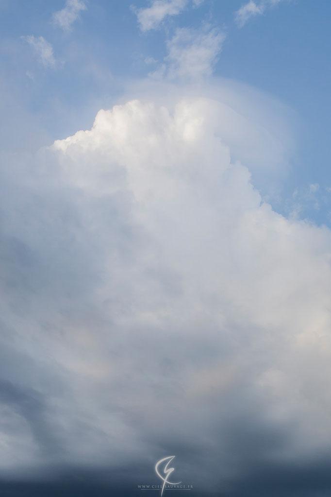 Cumulus avec en son sommet, l'apparition d'un pileus témoignant d'un signe humidité à cette altitude.