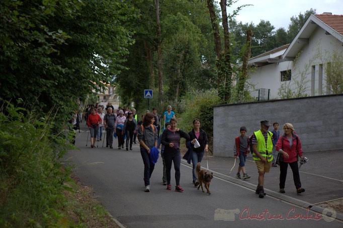 Festival JAZZ360 2015, randonnée pédestre, chemin des menuts, Camblanes-et-Meynac. 14/06/2015