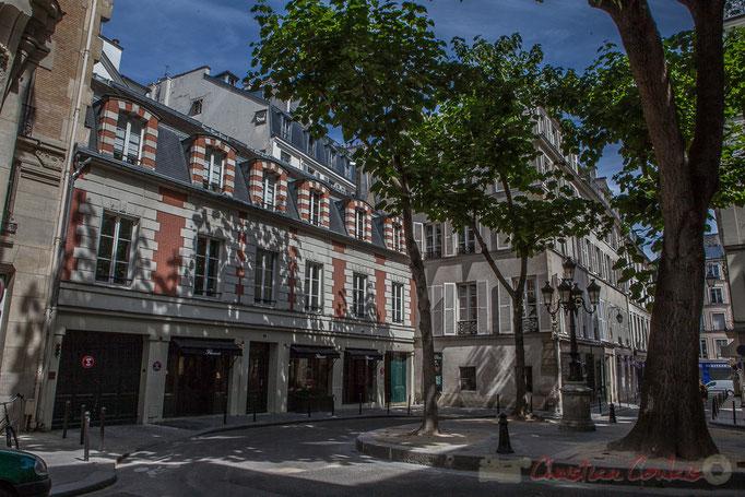 Arbres Paulownia tomentosa. Rue Cardinal Guillaume-Egon de Furstemberg, Paris 6ème
