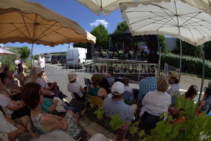 """""""Les parasols sont les bienvenus"""" Festival JAZZ360 2014, Cadijo vagabond blues project, Latresne. 08/06/2014"""