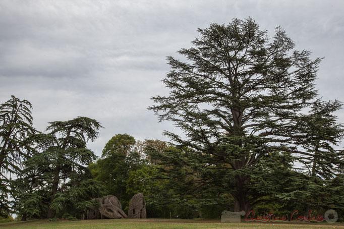 Installation de Patrick Dougherty (Etats-Unis), parc historique, Domaine de Chaumont-sur-Loire, Loir-et-Cher, Région Centre-Val-de-Loire. Mercredi 26 août 2015. Photographie © Christian Coulais
