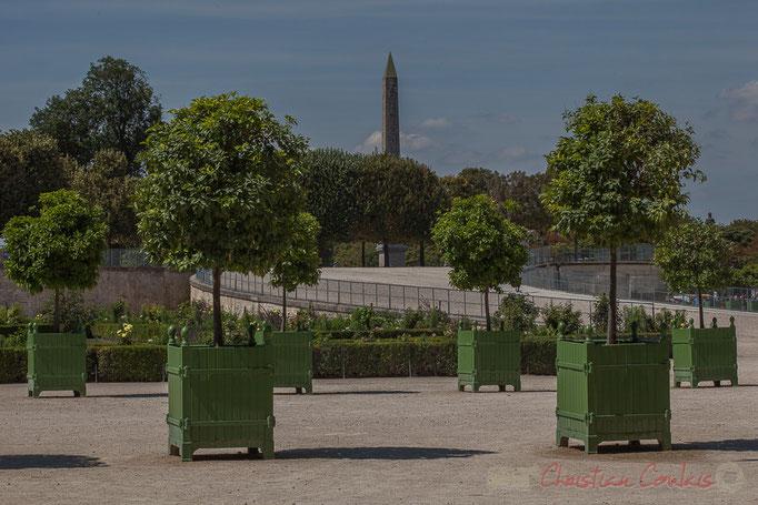 Fer à cheval, l'Orangeraie, Jardin des Tuileries, Paris 1er
