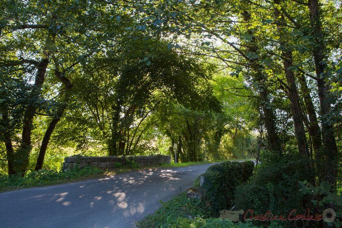 Pont limitrophe Camarsac / Croignon sur le Gestas