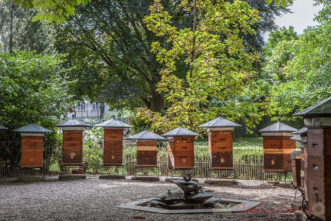 Le Rucher-école (depuis 1856), Jardin du Luxembourg, Paris 6ème