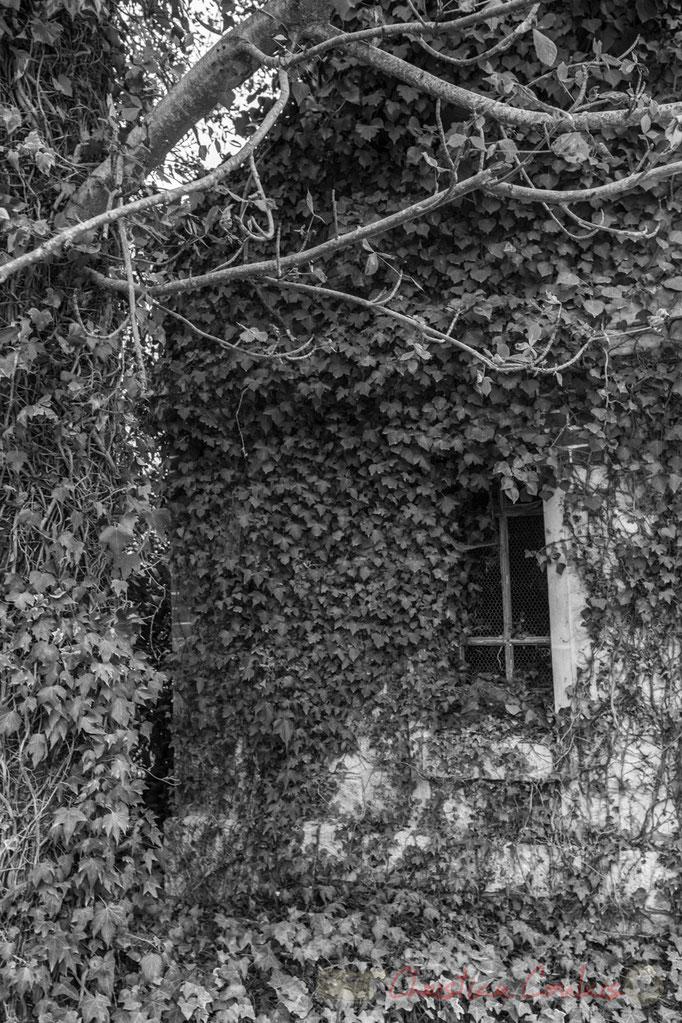 Domaine de Chaumont-sur-Loire, Loir-et-Cher, Région Centre-Val-de-Loire. Mercredi 26 août 2015. Photographie © Christian Coulais