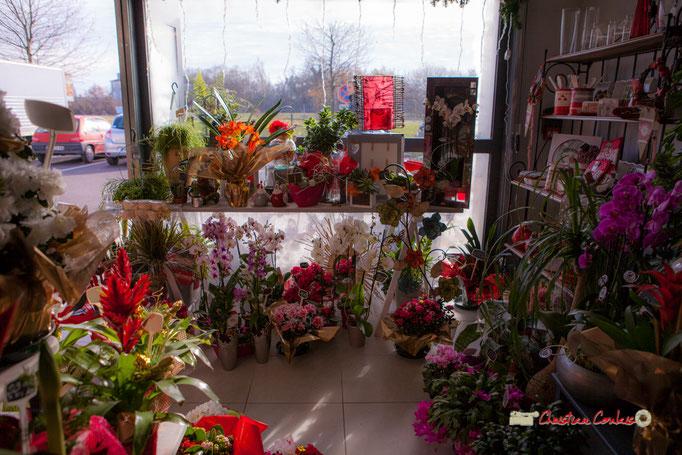 2 Fleurs et Passion, Véronique CONSTANT, Avenue de la Confluence, 47160 DAMAZAN Reproduction interdite - Tous droits réservés © Christian Coulais